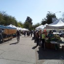 Redlands Farmers Market on Saturdays